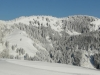 Blick Buchel Alpe